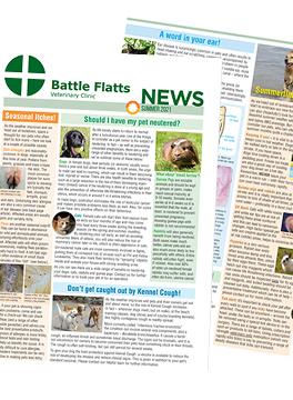 Battle Flatts Summer 2021 newsletter
